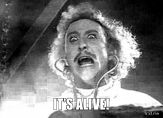 53 young-frankenstein-its-alive
